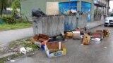 Контејнери со смет во Тетово.