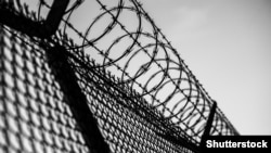 Generic -- Prison Barbed Wire Fence