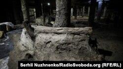 Археологічні знахідки. Поштова площа. Київ. 4 вересня 2018 року