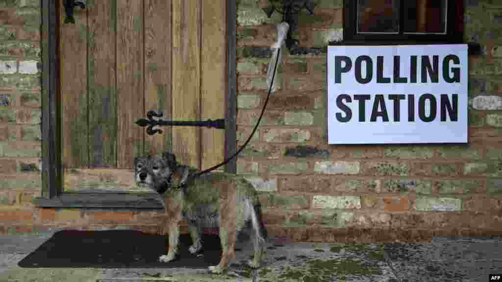 ВЕЛИКА БРИТАНИЈА - Граѓаните на Британија гласаа на вонредни парламентарни избори на кои се решава не само кој ќе управува во земјата, туку дали, кога и како оваа земја ќе излезе од Европската унија.