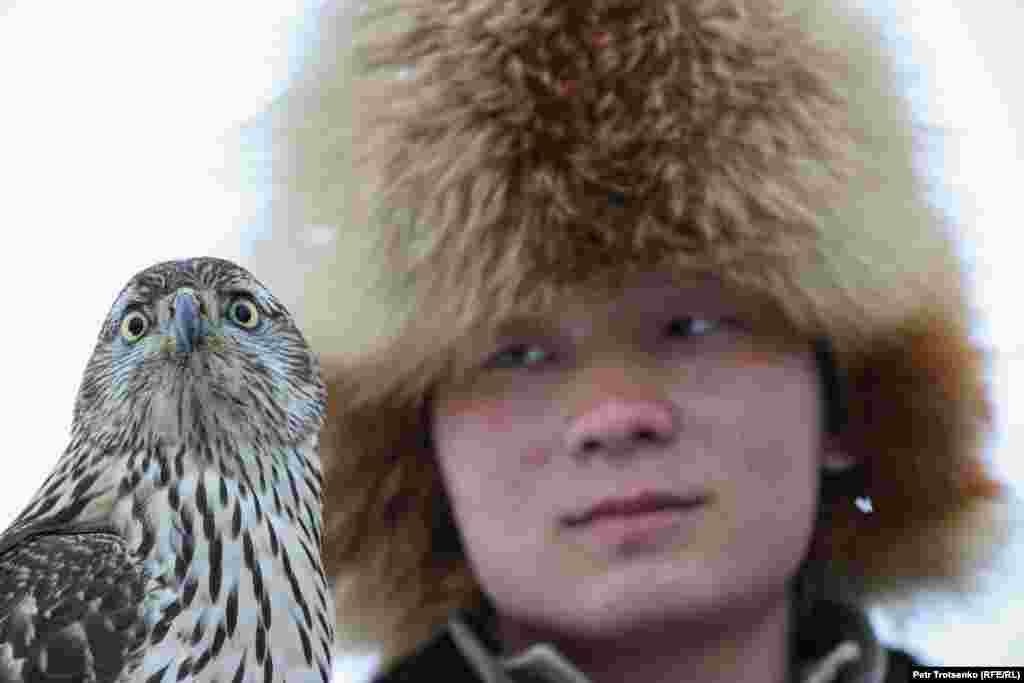 Мисливець і сокіл-балобан під час змагань беркутчі «Сонар-2020»