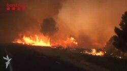 1200 hektar meşə yanıb, 130 yanğınsöndürən cəlb edilib.