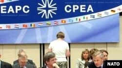 NATO rəsmisi hesab edir ki, Putinin təşəbbüsü gərginliyi azaltmaq üçün atılmış addımdır