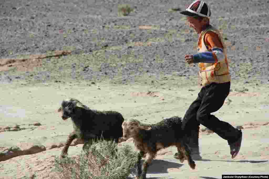 A local boy runs after his goats. The high desert climate makes farming nearly impossible, and locals depend almost entirely on food imports from Osh, Kyrgyzstan. Food staples transported to the remote region cost three to five times more than in Osh.