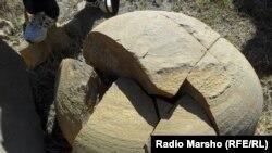 Нохчийчоь --Динозавран хIоа хила тарлуш болу тIулг, ХIимой, 09Оха2012