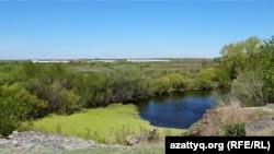 Түрген ауылының іргесіндегі мал ұстайтын жер. Ақмола облысы, 13 мамыр 2021 жыл.