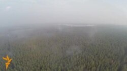 Forest Fires Ravage Outskirts of Kyiv