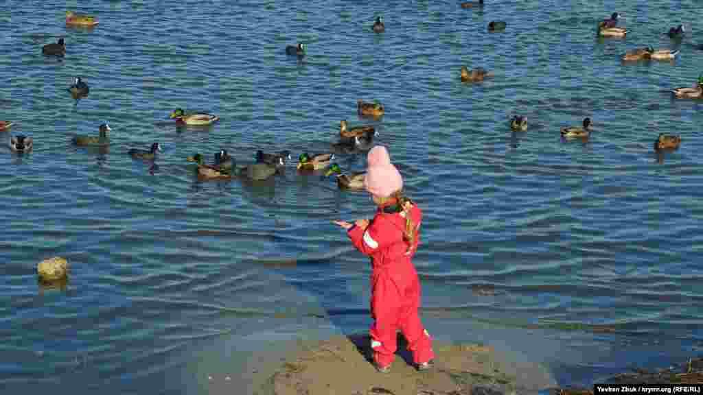 На ладошке девочки – лакомство для птиц