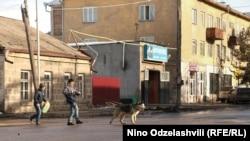 Axalkalaki şəhərindən göndərilən bu fotodan görünən odur ki, it oğlanı gəzməyə çıxarıb. Foto Nino Odzelashvili-nindir