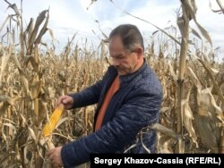 Фермер Виктор Зеленский, Павловский район