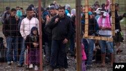 Грециядан Македонияга өткөн мигранттар жана качкындар лагерде катталуу үчүн кезек күтүшүүдө. Гевгелия шаары, 22-сентябрь, 2015
