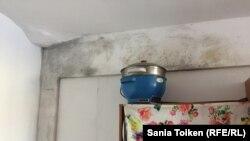 Покрывшаяся плесенью стена в комнате общежития Атырауского университета нефти и газа, где живут студенты из Китая. 4 февраля 2017 года.