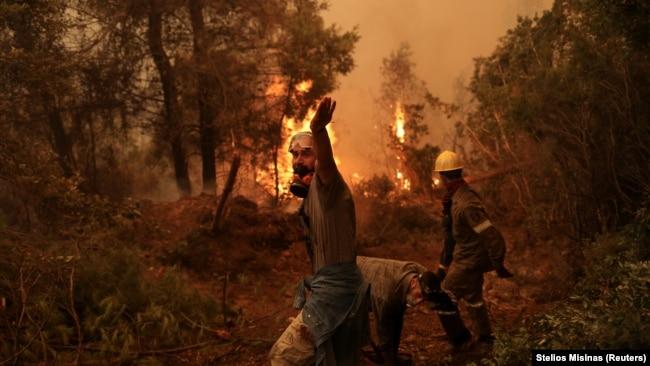 Lufto ose ik: Bota mes zjarreve