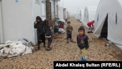 نازحون أيزيديون في مخيم إيسيان بدهوك