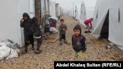 Ирактағы босқындар лагерінде тұрып жатқан езид балалары (Көрнекі сурет).