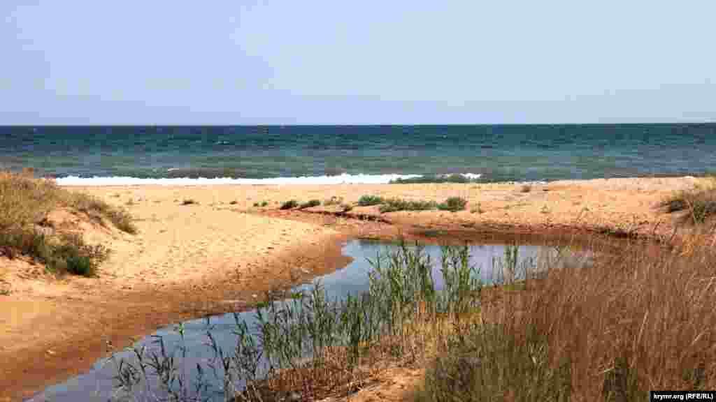 Пляжи в поселке Береговое известны своим золотистым цветом