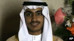 Hamza bin Ladenin bu şəkli onun toyunda çəkilib