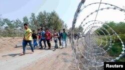Мигранты на венгерско-сербской границе, август 2015 года.