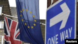 Britons voted by 52 percent to 48 percent to leave the EU in a June referendum.