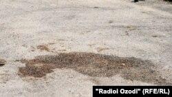 Холмумин Сафаров атып өлтүрүлгөн жер. Дүйшөмбү шаары, 14-июнь 2012