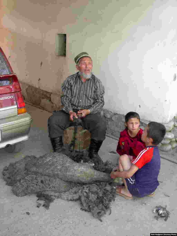 Внуки помогают деду обрабатывать баранью шкуру