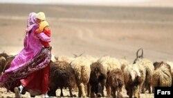 Баласын көтеріп, қой жайып жүрген әйел. Иран, 2012 жыл. (Көрнекі сурет)