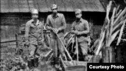 Такими они были, ликвидаторы чернобыльской катастрофы
