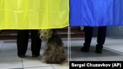 У МЗС України вважають, що офіційним спостерігачам від держави-агресора не місце у спостереженні за виборами в Україні