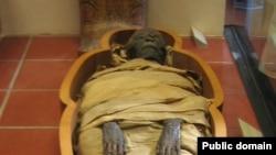 Одна из египетских мумий, хранящихся в музеях Ватикана.