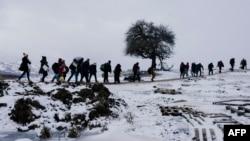 Փախստականներ Եվրոպայում, հունվար, 2016թ․