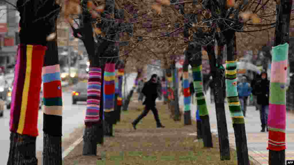 People walk past decorated trees in the Kosovar capital, Pristina. (AFP/Armend Nimani)