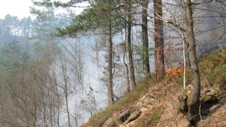 Požar kod Srebrenice, avgust 2012.