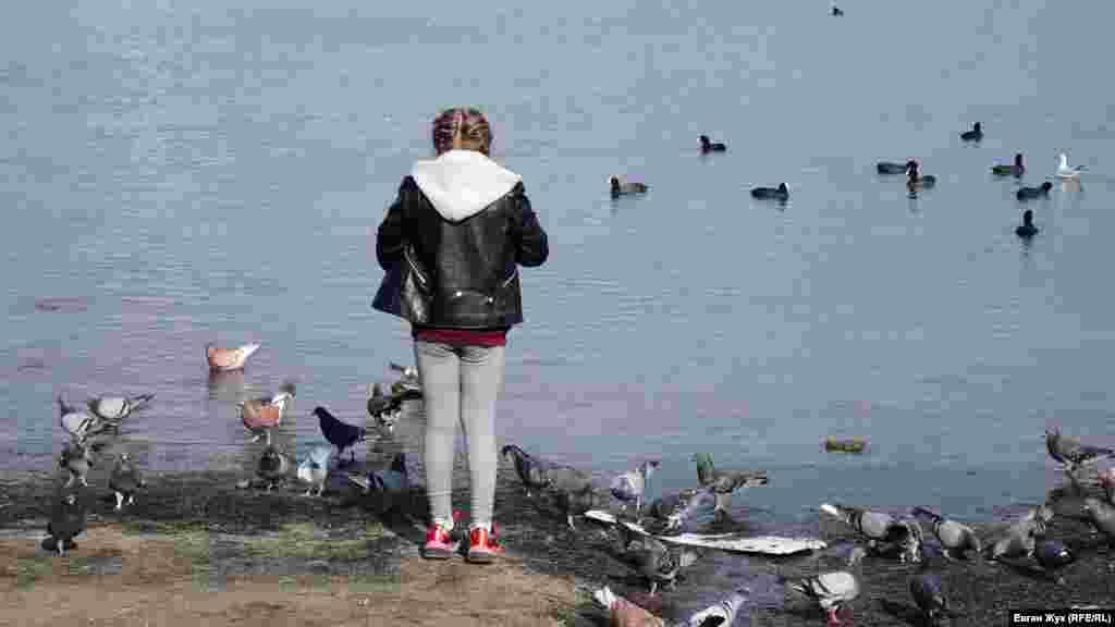 Девочка кормит голубей и уток