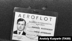 Пропуск бортпроводника Сергея Кожевникова, обнаруженный на месте катастрофы