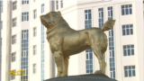 Turkmenistan. President Berdymukhamedov unveils golden monument to Alabai dog in Ashgabat. November 2020