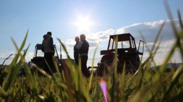 Poljoprivrednici zabrinuti, jer bh. vlasti nisu adekvatnim subvencijama omogućili da domaći proizvodi budu konkurentni