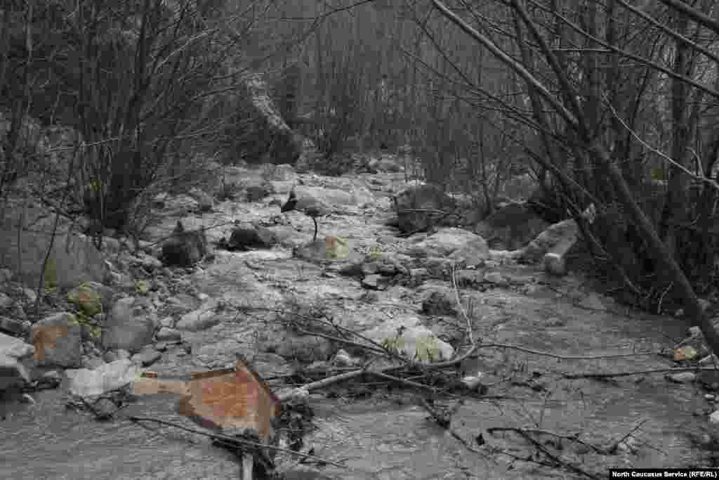 Река Садонка. В 2002 году из-за обильных дождей на на поселок обрушился селевой поток, который практически уничтожил Садон, погибли люди.
