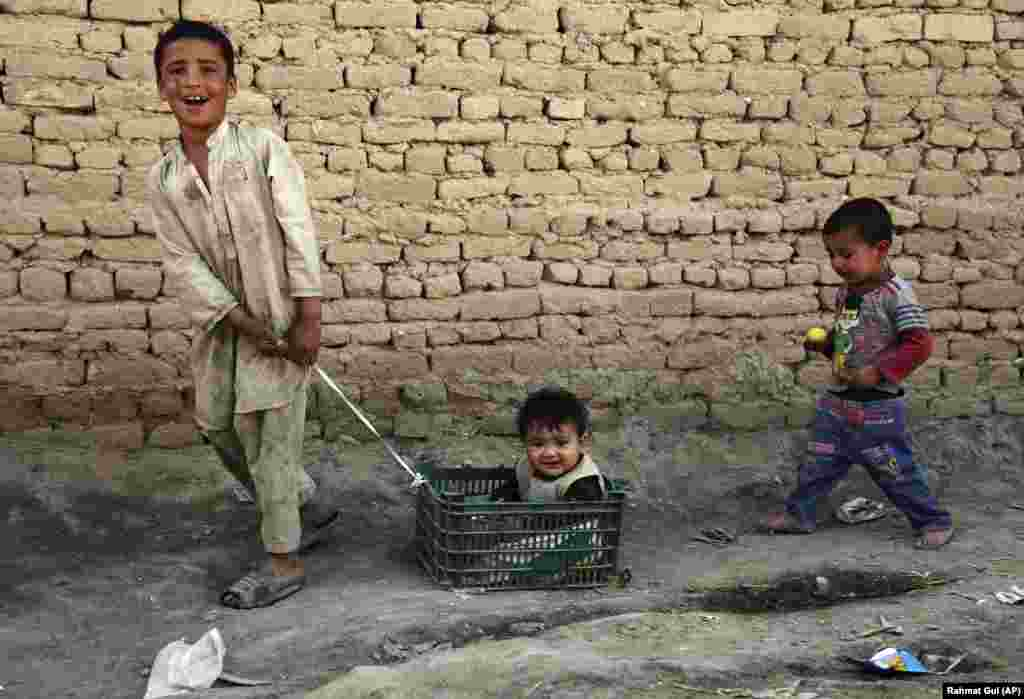An Afghan boy pulls his little brother in a basket on the outskirts of Kabul. (AP/Rahmat Gul)