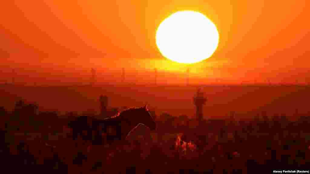 Заход солнца на берегу озера Донузлав возле поселка Мирный, что под Евпаторией