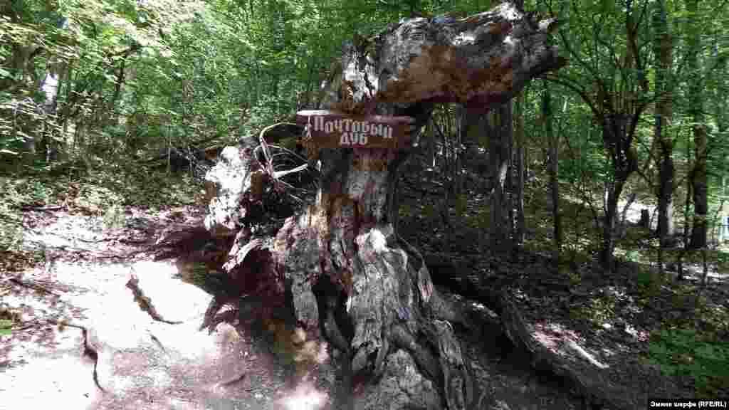 """""""Poşta emeni"""" - dereniñ baqılğan yerlerinden birisi. Evelleri bu terekniñ quvuşında turistler tilekler ve hatıralarnen mektüplerni qaldıra ediler. Terek tahminen 1981 senesi yandı. Sürette - terekniñ qalıntıları"""