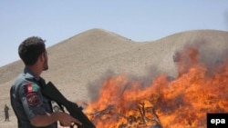 An Afghan policeman stands guard as authorities burn seized narcotics in Herat Province.