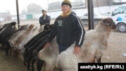 Скотоводческий рынок в Бишкеке
