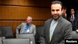رضا نجفی، نماینده ایران در آژانس بین المللی انرژی اتمی