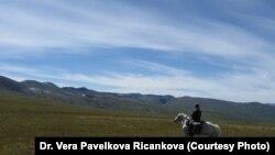 Алтай-Саянский регион. 2008 год.