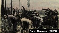 Спецпереселенцы в тайге