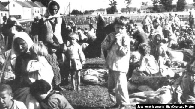 """""""Logor Jasenovac je bio sistem ubijanja izgladnjivanjem i iznurivanjem"""": Goldstein"""