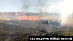 Адміністрація парку у дельті Дністра каже, що вигоріли великі площі