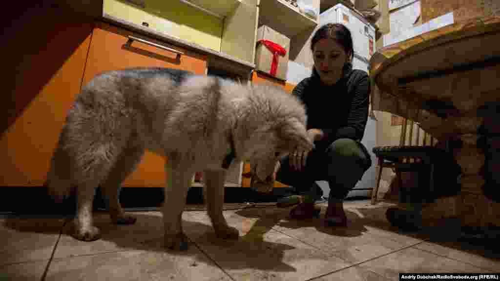 Дарина (23 роки) годує свого улюбленця, песика Рональда. На війні Даша з 2014 року, спочатку як волонтер, потім вже як воїн української армії. Вдома на Дашу чекає 6-річна донька