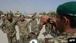 ارشیف، افغان سرتیري