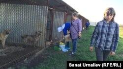 Волонтер Юлия Асиновская (справа) в питомнике для собак. Село Круглоозерное Западно-Казахстанской области, 21 мая 2015 года.